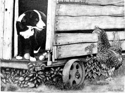 Edith's completed Border Collie pup and Hen graphite pencil drawing