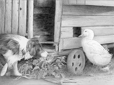 June's Dog and Duck graphite pencil drawing