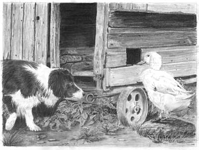Kathryn's Border Collie and Duck graphite pencil drawing